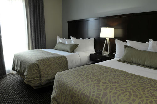 Photo of guest room at Staybridge Suites in St Petersburg, Florida