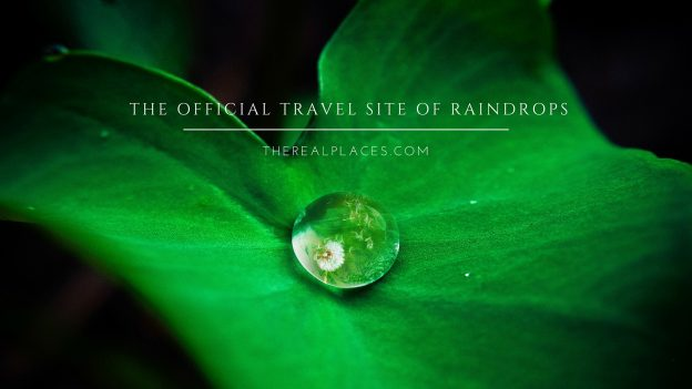 the official travel site of raindrops
